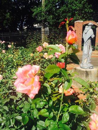 Clemmons, NC: Garden