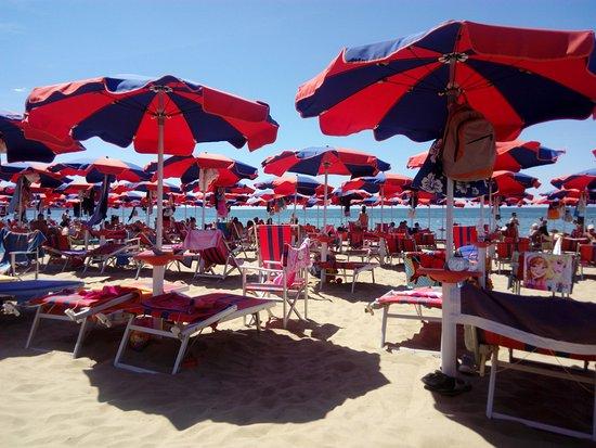 spiaggia - Foto di Hotel La Pineta, Follonica - TripAdvisor