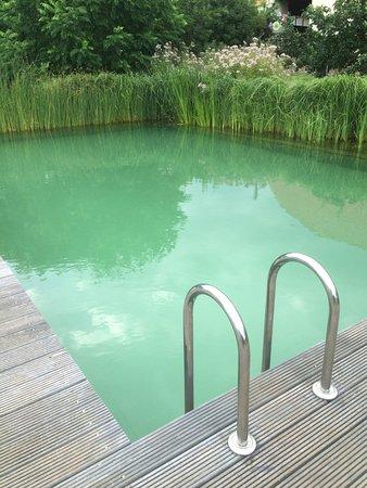 Auerstedt, Germany: Der Schwimmteich