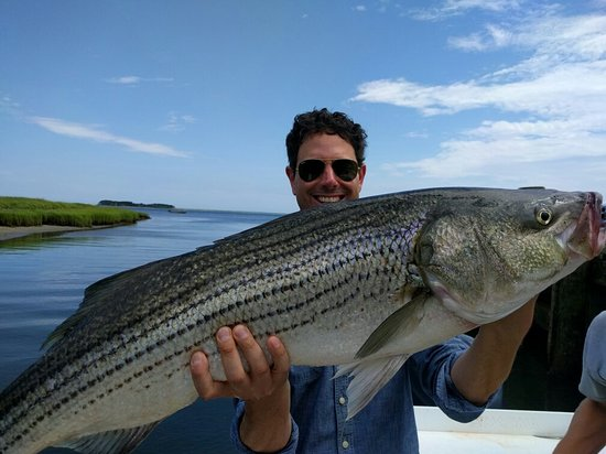 South Orleans, MA: Avid Angler Charters