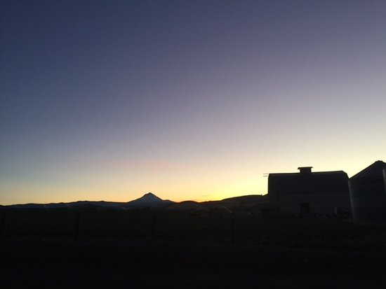 Dufur, Орегон: View of Mt Hood at sunset out the front door