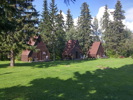 Quesnel, Canada: Some of the cabins