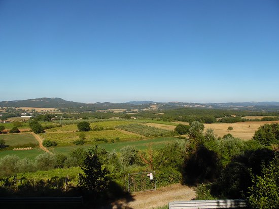 Pievescola, Italia: View from the Lemon garden