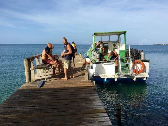 Utila, Honduras: El Staff preparando el material para salir a bucear
