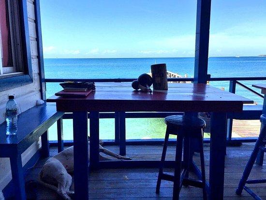 Utila, Honduras: Zonas comunes y vistas desde el Paradise Divers