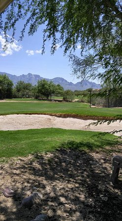 Oro Valley, AZ: Chipping area