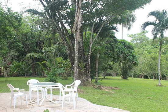 Punta Gorda, Belize : Patio, Main Lodge