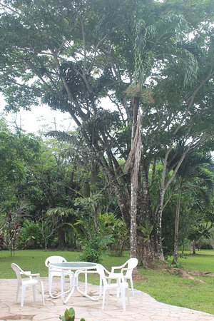 Punta Gorda, Belize : A view from Main Lodge patio
