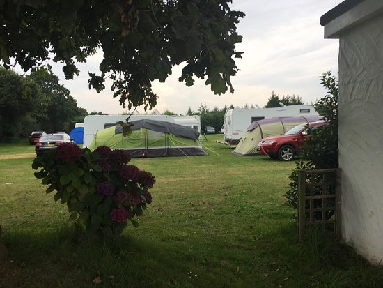 Beuvelande Camp Site: Camping fields and park
