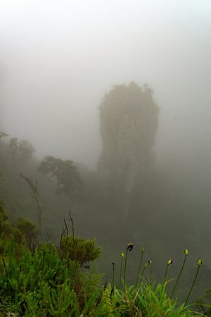 Graskop, Sudáfrica: The Foggy Pinnacle