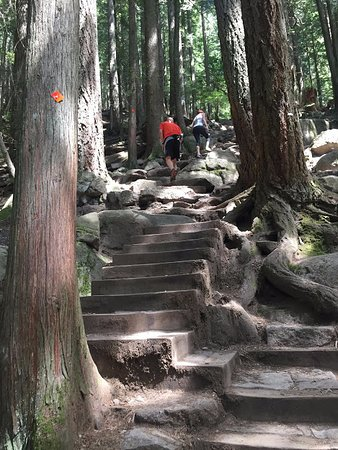 North Vancouver, Kanada: Stairs and more stairs