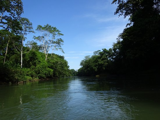 Puerto Viejo de Sarapiqui, Costa Rica: The river