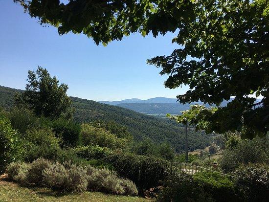 Agriturismo Rocca di Pierle: photo2.jpg