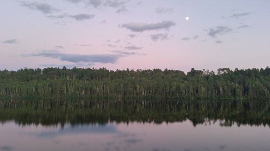 Ely, MN: The view at night!