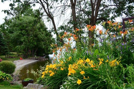 Howe Island B&B: River front garden