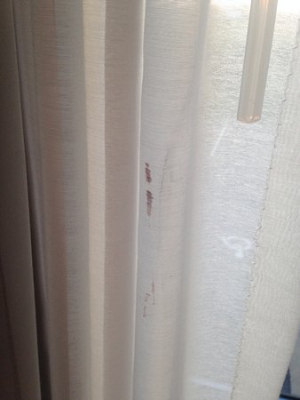 Fairmont, MN: Blood stain on curtains