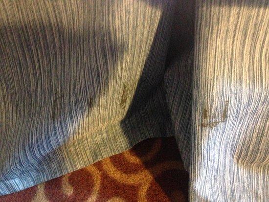 แฟร์มอนท์, มินนิโซตา: Unknown brown substance on bed's dust ruffle