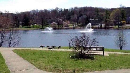 Watchung, NJ: Watching Lake