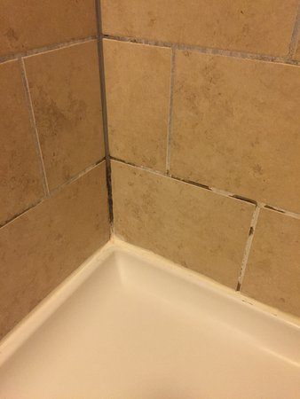 Hampton Inn Traverse City: photo0.jpg