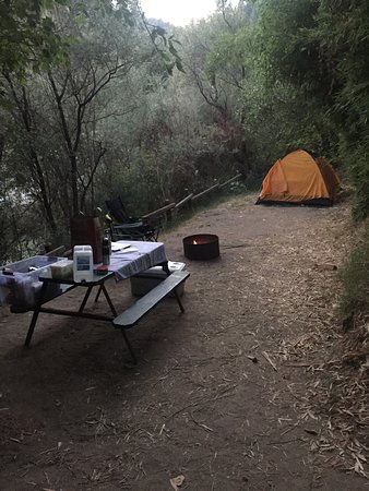 Forestville, Kalifornia: Camp site