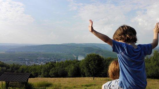 Leiwen, ألمانيا: Geweldig uitzicht vanaf de hertenweide!