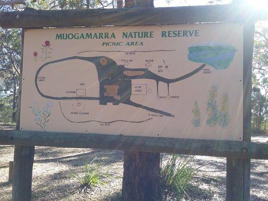 Muogamarra nature reserve