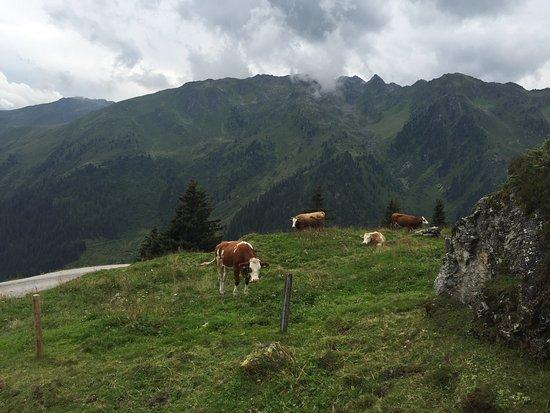 Hippach, Austria: photo2.jpg