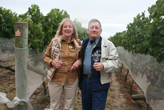 Hastings, Nueva Zelanda: Right at the vines