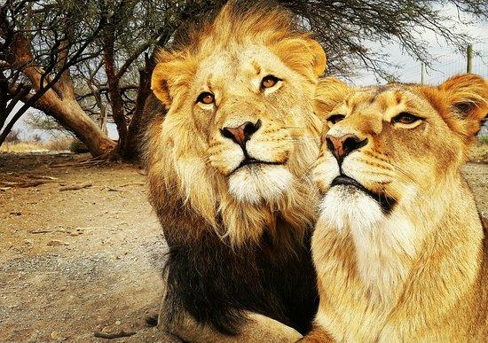 Kimberley, Sudáfrica: IMG_20160816_211235_large.jpg