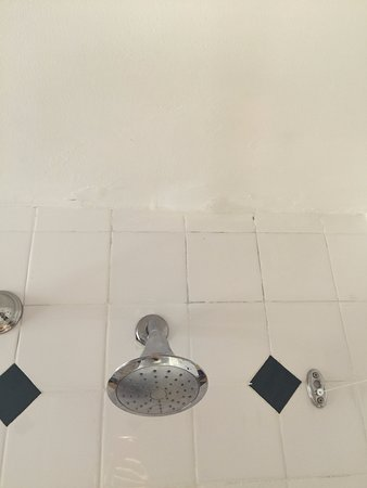 Beaches Turks Caicos Resort Villages Spa Black Mold On Tile Grout Lines In