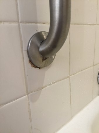 Mold In Shower Handle mold on the shower grab bar at the french village - picture of