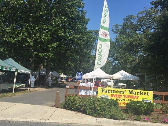 Rehoboth Beach Farmer 39 S Market De Top Tips Before You Go Tripadvisor