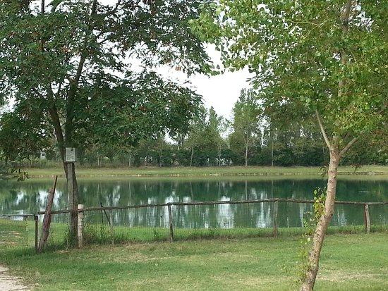 Falconara Marittima, Italy: Il lago nel parco