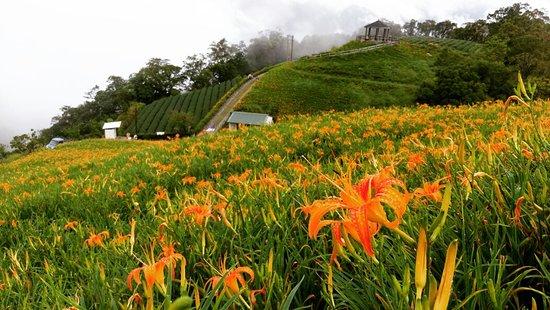 Taimali Kinchen Mountain