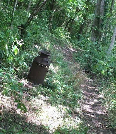 Lower Howard S Creek Nature Preserve Kentucky