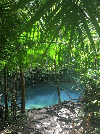 Diwan, Australia: photo2.jpg