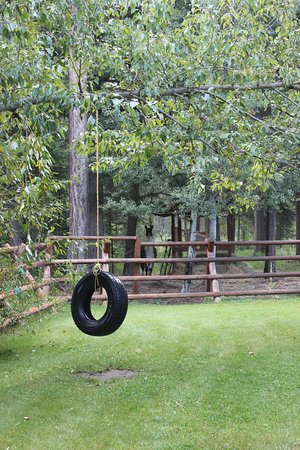 Hungry Horse, MT: Tire swing