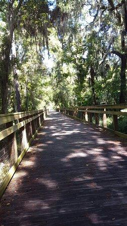 DeBary, FL: Snapchat-2306450925834985364_large.jpg