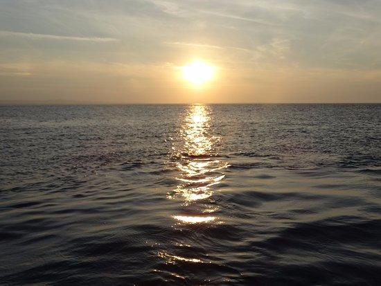 Cheswick, UK: Start of a beautiful sunset on our cruise