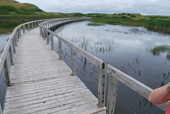 Saint Peters Bay, Canadá: View from the boardwalk heading to the dunes