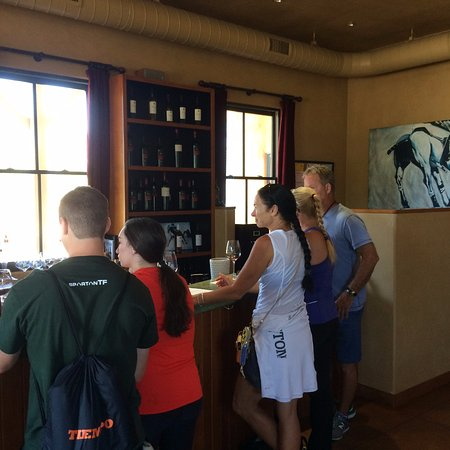 Envy Wines: Getaway Adventure cozying up to the wine tasting bar at Envy Winery!