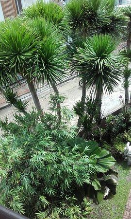 Milflores de Boracay: 20160812_093552_large.jpg