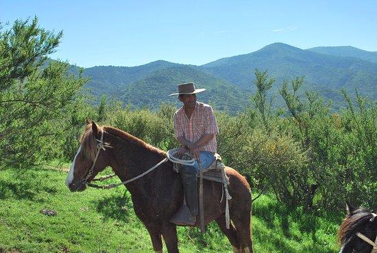 Concon, Chile: Cabalgando con Benjamin, nuestro guía