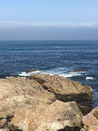 Pebble Beach, CA: Beautiful ocean view