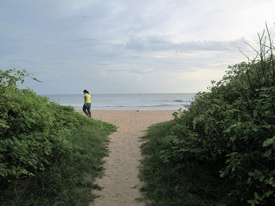 Playa Grande, Costa Rica: The end of the short walk to the beach