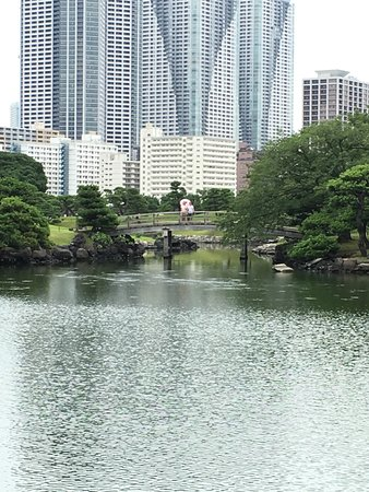 Jardines Hama Rikyu: View over lake with city view