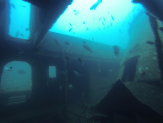 Dive Locker Red Sea