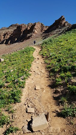 West Maroon Trail: nearing West Maroon Pass