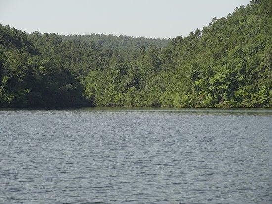 Lake Catherine State Park: Lake View