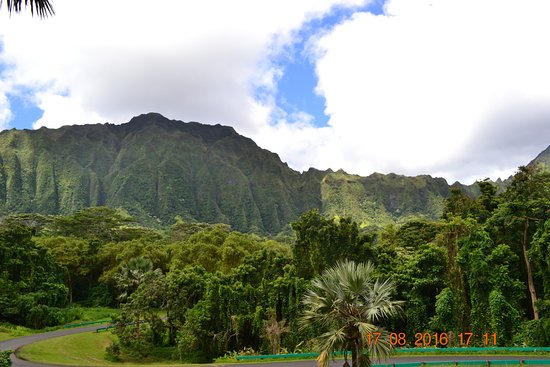 Kaneohe, Hawaje: mountain view